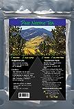 ORGANIC PINE NEEDLE TEA - 20 Bags - VEGAN, PALEO FRIENDLY, GLUTEN-FREE, NON-GMO, ZERO SUGAR, NO ADDED SALT, PRESERVATIVE FREE