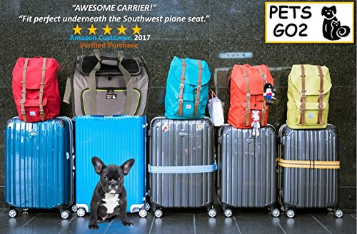 Pets Go2 Pet Carrier For Dogs Amp Cats Airline Approved