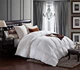 AIKOFUL Down Comforter Queen/Full Size, Hypoallergenic White Muscovy Down Comforter, Duvet insert Cotton Fabric,Double Edge Gray Piping, 600TC 700Fill Power
