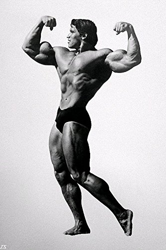 Amazon com: Lawrence Painting Arnold Schwarzenegger