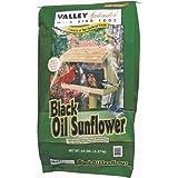 Oil Sunflower Bird Food, 20 Lb, My Pet Supplies