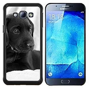EJOOY---Cubierta de la caja de protección para la piel dura ** Samsung Galaxy A8 A8000 ** --Curly Coated Negro Cabello corto perro perdiguero