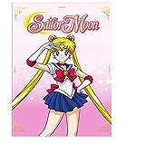 Sailor Moon Season 1 Part 1