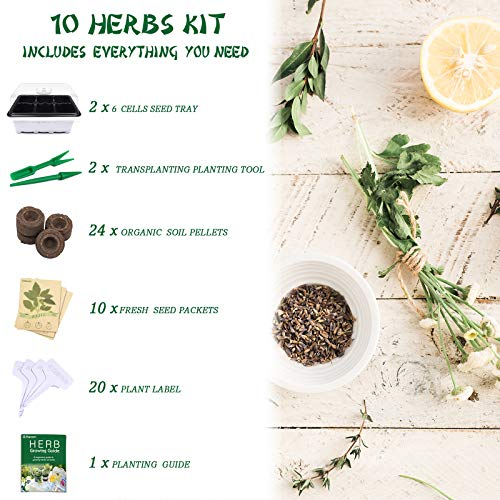 KORAM Herb Garden Kit Growing Kit Gardening Starter Set- 10 Herbs Grow from Organic Seeds Indoor Herb Kit with Everything a Gardener Needs for Growing Herbs Indoors, Kitchen, Balcony, Window Sill by KORAM (Image #2)