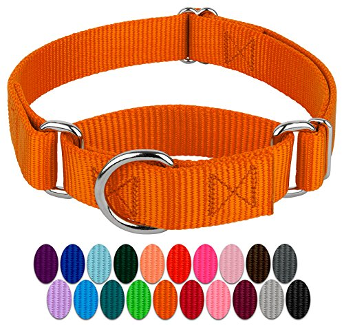 Country Brook Design | Martingale Heavyduty Nylon Dog Collar - Orange - Small