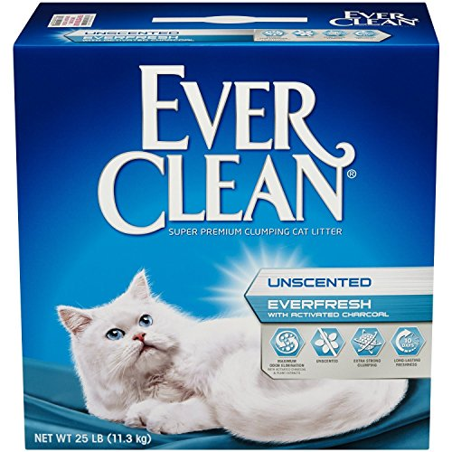 Ever Clean  Ever Clean