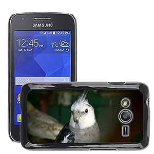 Etui Housse Coque de Protection Cover Rigide pour // M00133414 Cara del loro mascotas para colorear // Samsung Galaxy Ace4 / Galaxy Ace 4 LTE / SM-G313F