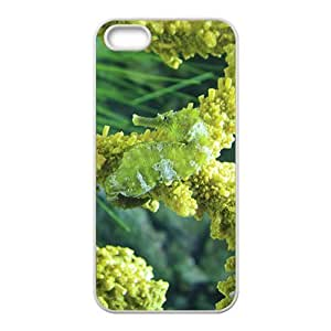 MMZ DIY PHONE CASEThe Green Sea Horse Hight Quality Plastic Case for Iphone 5s