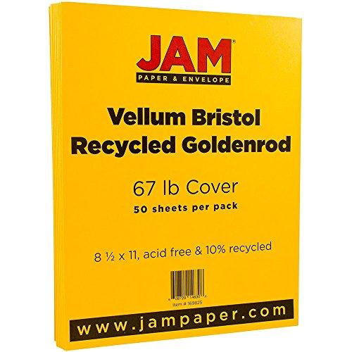 Orange Vellum (JAM Paper Vellum Bristol Cardstock - 8.5