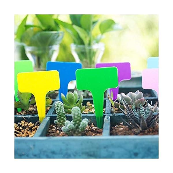 shuxuanltd Etichette Impianto di Plastica Ecologico Etichette Vegetali per Piante da Esterno Etichette Vegetali per Semi… 6 spesavip
