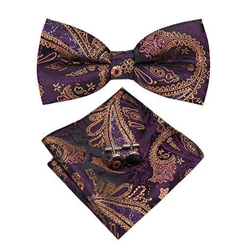 Hi-Tie Men Brown Gold Paisley Floral Bow Tie Necktie with Cufflinks and Pocket Square Bow Tie Set (LH-752) ()