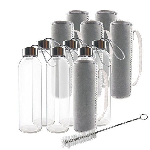 Teikis (6-Pack) Glass Water Bottles 18oz with Stainless Steel Cap, Brush and 6 Nylon Protection Sleeve](Inflatable Bottle Sleeve)