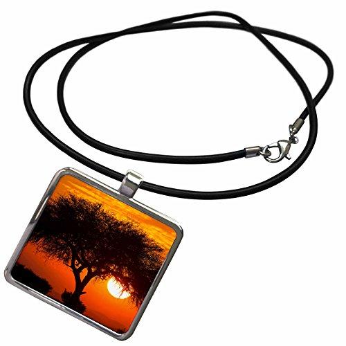 3dRose Danita Delimont - Sunsets - Etosha NP, West Entrance, Namibia, Acacia tree at sunset. - Necklace With Rectangle Pendant (ncl_225064_1)