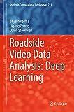 Roadside Video Data Analysis: Deep Learning