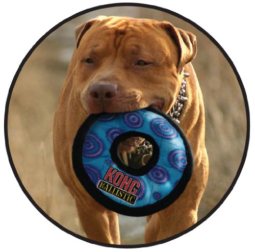 Kong ballistic ring dog toy large colors vary import for Ballistic dog