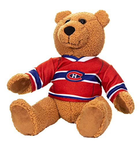 NHL Team Jersey 10