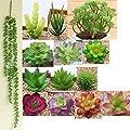 Artificial Succulents Plants Flowers 12 PCS