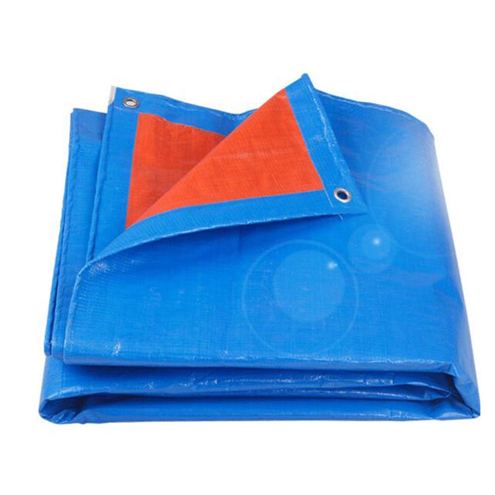 超美品 QIDI ターポリン ターポリン バイザー布 6m) 青 アウトドア 厚い プラスチック 5*6m 防水 キャノピー布 (サイズ さいず : 5* 6m) 5*6m B07H9P74XJ, デンキヤ2:c63680ee --- martinemoeykens.com
