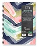 2017 Academic Year Painted Colors Perfect Planner