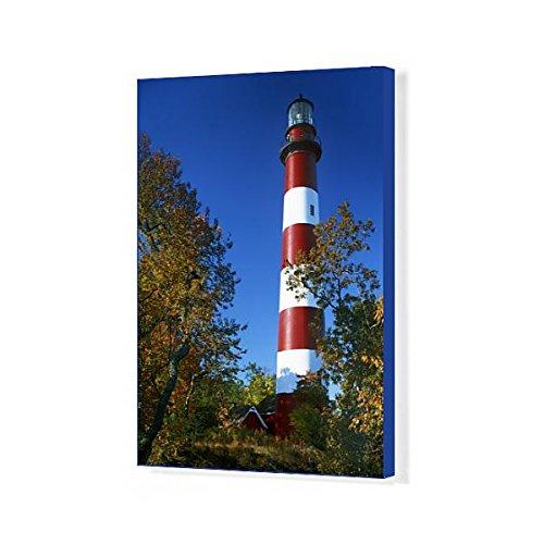 20x16 Canvas Print of USA, Virginia, Assateague Island, Chincoteague National Wildlife (11186140) -