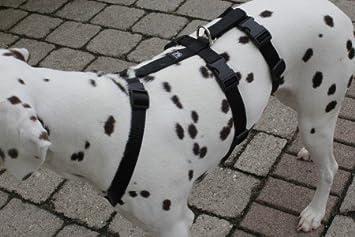Soft Uni Feltmann NoExit Brustgeschirr ausbruchsicher Sicherheitgeschirr f/ür Hunde