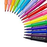 Paper Mate Flair Felt Tip Pens, (0.7mm), 16 Count