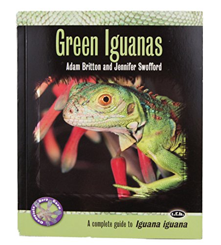 Complete Guide to Green Iguanas
