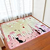 Cheap Wolala Home Soft and Smooth Coral Fleece Rug Cute Cat Thicking Non Skid Girls Bedroom Carpet Foot Mats(4'3×6'0, Pink)