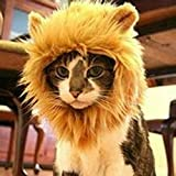 Sporer@ Pet Costumes Lion Mane Wig Cat Costume and Small cat and dog Costume with Complimentary Feathered Catnip Toy Headwear Hat with Ears for Halloween&Christmas(Glod (J))