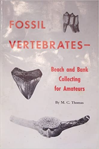 Amateur bank beach collecting fossil vertebrate