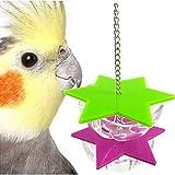 Prestige Pet Bird Toys
