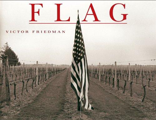 Download Flag ebook
