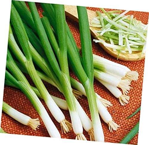 Onion 500 Seeds White Bunching