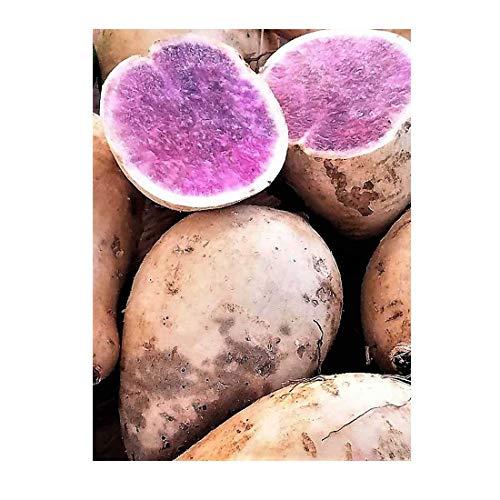 (Okinawan Hawaiian Purple Sweet Potatoes 3 Lbs.)