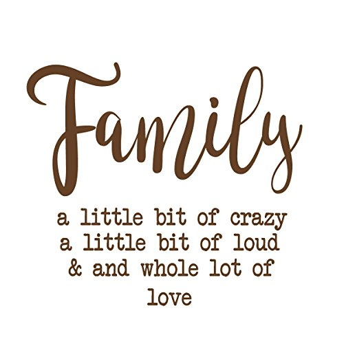 Family Wall Decal - A little Bit of Crazy - Custom Order