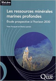 Book Les ressources minérales marines profondes : Etude prospective à l'horizon 2030