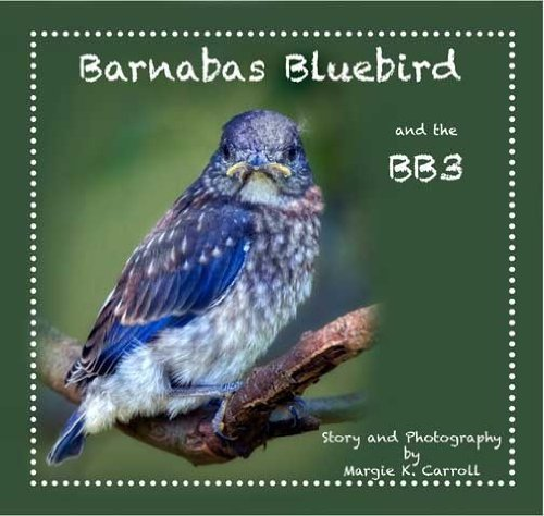 Download Barnabas Bluebird and the BB3 pdf