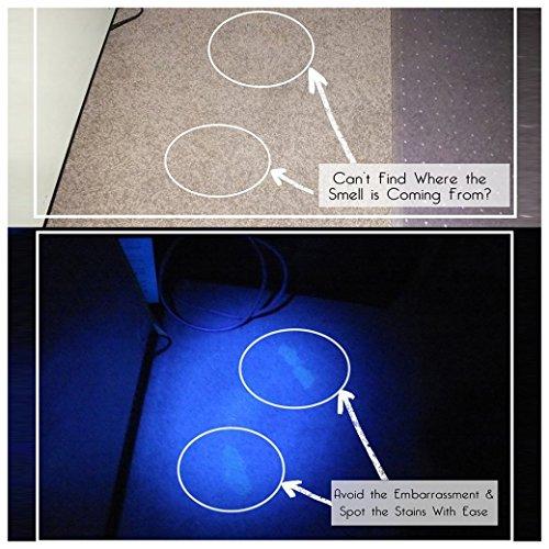 Morpilot Schwarzlicht, 2 Stück UV Handheld Schwarzlicht Taschenlampen 12 LED 395nm Mini Light Fackeldetektor für Haustiere Urin und Flecken