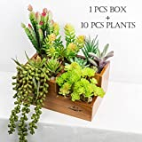 CHICVITA Artificial Succulent Plants Assorted Decorative Faux Succulents Artificial Cactus Aloe with Wooden Garden Window Box Trough Planter Succulent Flower Bed Pot (Three gird)