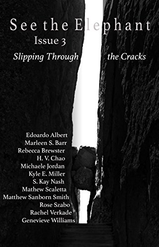 See the Elephant, Issue 3: Slipping Through the Cracks