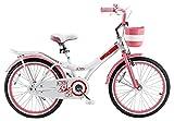 Y & Y TOY STORE ON LINE Girls' Jenny Kids Bike, Pink, 20'