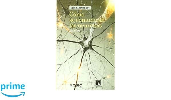 Cómo se comunican las neuronas (¿Que sabemos de?): Amazon.es ...