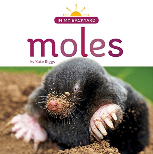 moles-in-my-backyard