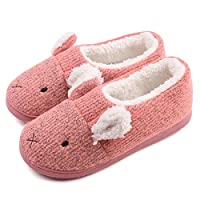 Women S Animal Slippers And House Shoes