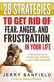 28 Strategies to Get Rid of Fear, Anger, and Frustration in Your Life: A daily journey to control your emotions in your worst moments! by [Banfield, Jerry]