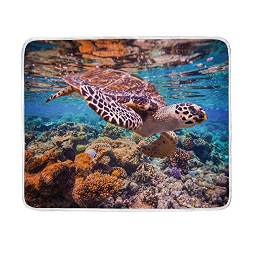ALAZA Sea Turtle Ocean Coral Reef Plush Throws Siesta Camping Travel Fleece Blankets Lightweight Bed Sofe Size 50x60inches
