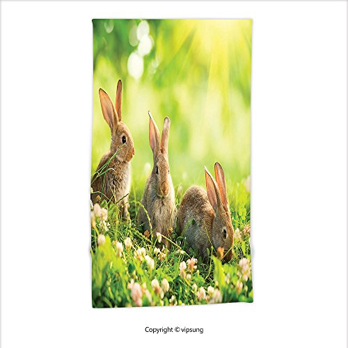 Vipsung Microfiber Ultra Soft Hand Towel-Animal Decor Funny Fluffy Rabbits Bunny Family On Daisies Grass Easter Meadow Fresh Image Green Tan For Hotel Spa Beach Pool Bath - Primitive Easter Grass