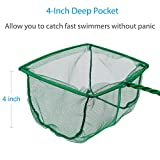 Pawfly 6 Inch Aquarium Fish Net Large Nylon Fishing Nets with Plastic Handle for Fish Tank, Green