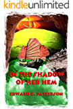 In the Shadow of Her Hem (The Jade Owl Legacy Book 5)