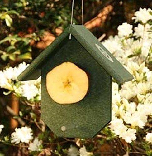 GC - Songbird Essentials - Fruit Feeder - Hunter Green ()